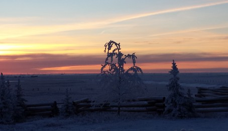 A wonderful frosty sunrise at the Ranch
