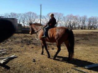 Reyd riding Zipper