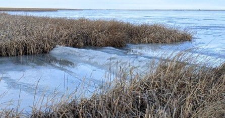 Frost heaves on the boat launch